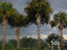 Thunderstorm, Florida