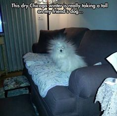 Dump A Day Funny Pictures Of The Day - 88 Pics