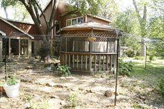 outdoor cat enclosure.