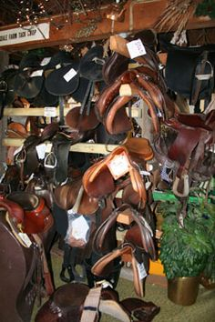 saddles and tack - Google Search