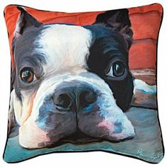 18 Robert McClintock Moxley Boston Terrier Square Throw Pillow 1 of 1