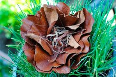 Wet Molded Leather Flower Tutorial