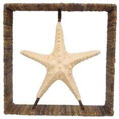 Shadow Box - Starfish