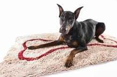doggy rugs to soak up the wet and mud