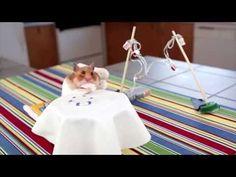 Tiny Hamsters Eating Tiny Burritos. #tinyhamsterthursday