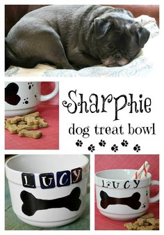 dog bowl diy sharpie diy craft idea for your green pet (any white bowl from your stash or a yard sale would work)