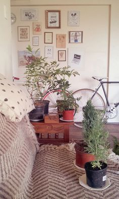 art wall and house plants