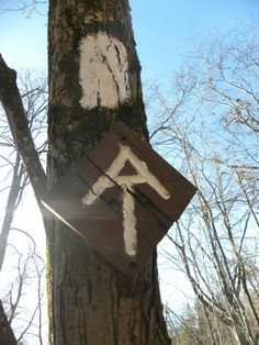 AT at High Point State Park...fun hike! http://www.appalachiantrail.org/