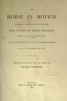 The Science of Movement: Eadweard Muybridge - British photographer Eadweard Muybridge was born on April 9th 1830 in Kingston upon Thames, later emigrating the United States in the 1850s. Muybridge is renowned for his ground-breaking work in animal locomotion, proving a horse does in fact fly when galloping. He was one of the first photographers to use multiple cameras to capture motion... http://blog.europeana.eu/2012/04/the-science-of-movement-eadweard-muybridge/