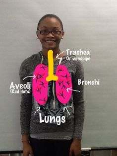 What a fun way to teach about human body - using an app to draw the body parts