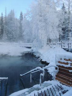 """The Liard River Hot Springs in Northern BC (along the Alaska Highway) would be spectacular to visit during winter when snow covers most of the surrounding forest. """"Liard's Hot Springs , British Columbia , Canada"""" #explorebc"""