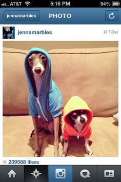 Jenna marbles Kermit and Marbles!!!