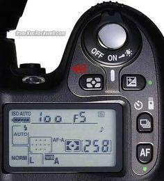 Good Nikon D80 tips!