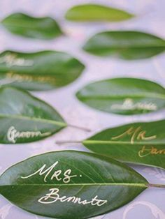 Leaf place cards. Ho