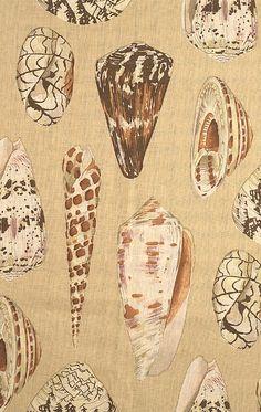 Scalamandre Coquina shell fabric for bathroom