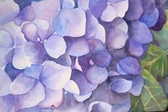 watercolor paintings, watercolor hydrangea, art, origin watercolor, prints, gicle print, watercolour, hydrangea gicle, hydrangeas