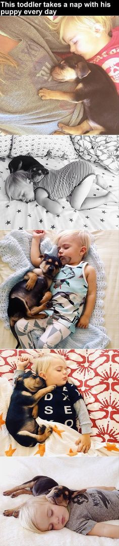 the baby sleeps with puppy