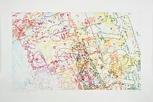 INGRID CALAME  #291 Drawing (Tracing from Arcelor-Mittal Steel, Buffalo, NY), 2008  Colored pencil on trace Mylar  48 X 72 inches