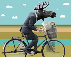 3 key maintenance tasks to keep your  #website pedaling-on