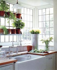 gardening sink