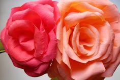 corner blog: nice big paper roses