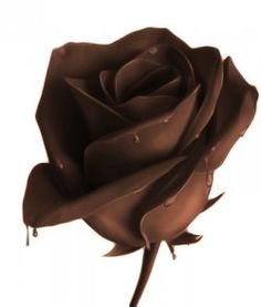 Modeling chocolate - super easy recipe! Make gorgeous decorations for baked goods or use alone as a garnish...