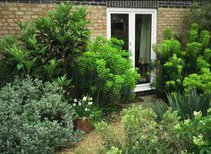 An apartment garden in Sussex