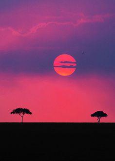 Sunset over the Maasai Mara game reserve, Kenya