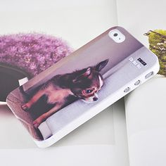 Apple iPhone 4 Hard Sided iKnow Dogs Skin Case