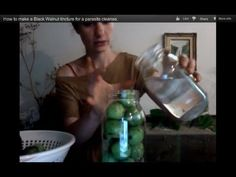 How to make a Black Walnut tincture for a parasite cleanse.