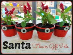 Easy DIY Santa flower gift pots for family and teachers - Mummy Musings and Mayhem