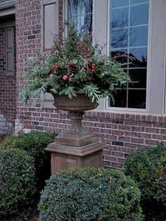Beautiful urn & love the Christmas arrangement | Garden, Home & Party