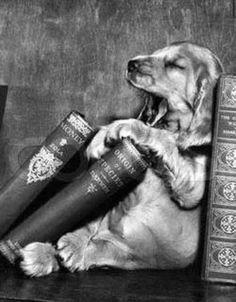 I love books:)))