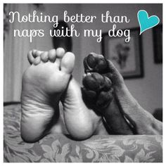 Naps with my dog..♥