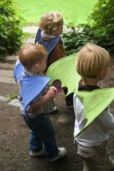 dragon wings. No more fairy wings for boys from their sister!