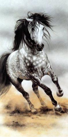 Lesley Harrison dappled grey horse art