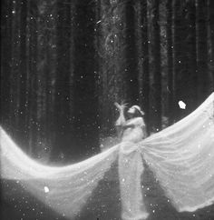 forests, magic, fairies, wood, dreams, ghosts, black white, inspir, photographi