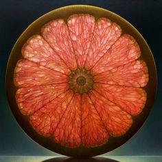 grapefruit oil paintings, fruit, art paintings, nature, denni wojtkiewicz, oranges, artist, blood orange, stained glass