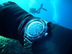 Amphibia underwater