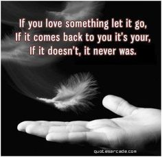 If You Love Something Let It Go