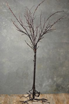 Tree for ceremony decor.