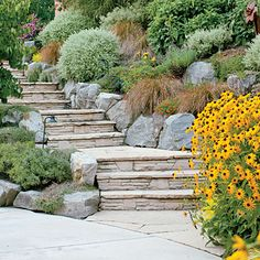 Lovely terraced staircase Hefty granite boulders help anchor the hillside, and lined up along the terraced staircase, they form the perfect spot for displaying plants. The weeping orange sedge repeated on the left helps to soften the scene. terraced front yard, stone steps, landscaping ideas, front yard landscaping, outdoor space, front yards, terraced yards, garden idea, garden stairs