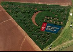 PBar Farms-Weatherford, OK  This made my heart swell up! Thank you PBar Farms! #Oklahoma #rfl