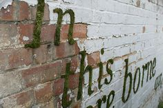 Moss Graffiti @ instructions http://www.designmom.com/2011/08/moss-graffiti/  Directions:   Put in blender: one can of cheap beer (or 1 1/2 cups buttermilk), a few handfuls of moss, one teaspoon of sugar. Paint on wall and mist daily until it grows.