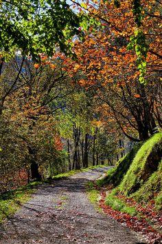 Camino de colores (by basajauntxo)