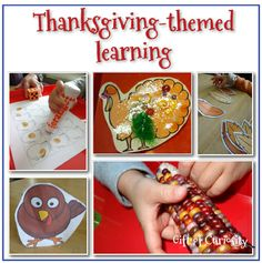 Thanksgiving-themed learning activities for preschoolers - Gift of Curiosity