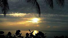 Good Morning, Sea Life's Beauty, Courtesy of Sunrises with Mary Jane