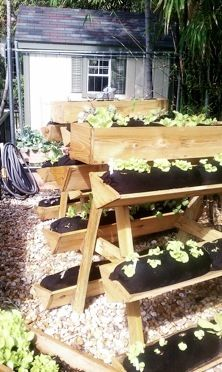 What a cool raised bed idea! Farmer Jay Pure Organics http://www.myfarmerjay.com