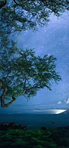 Maui night sky .