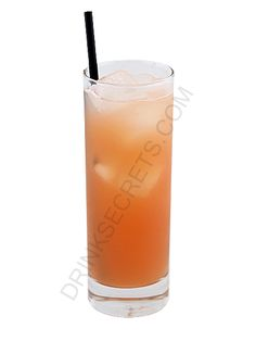 gilligan's island | 3 cl 	Peach Schnapps  3 cl 	Vodka  9 cl 	Cranberry Juice  9 cl 	Orange Juice  Mixture:    1. Pour all ingredients into a cocktail shaker filled with ice.    2. Shake and strain into a highball glass.    3. Serve.